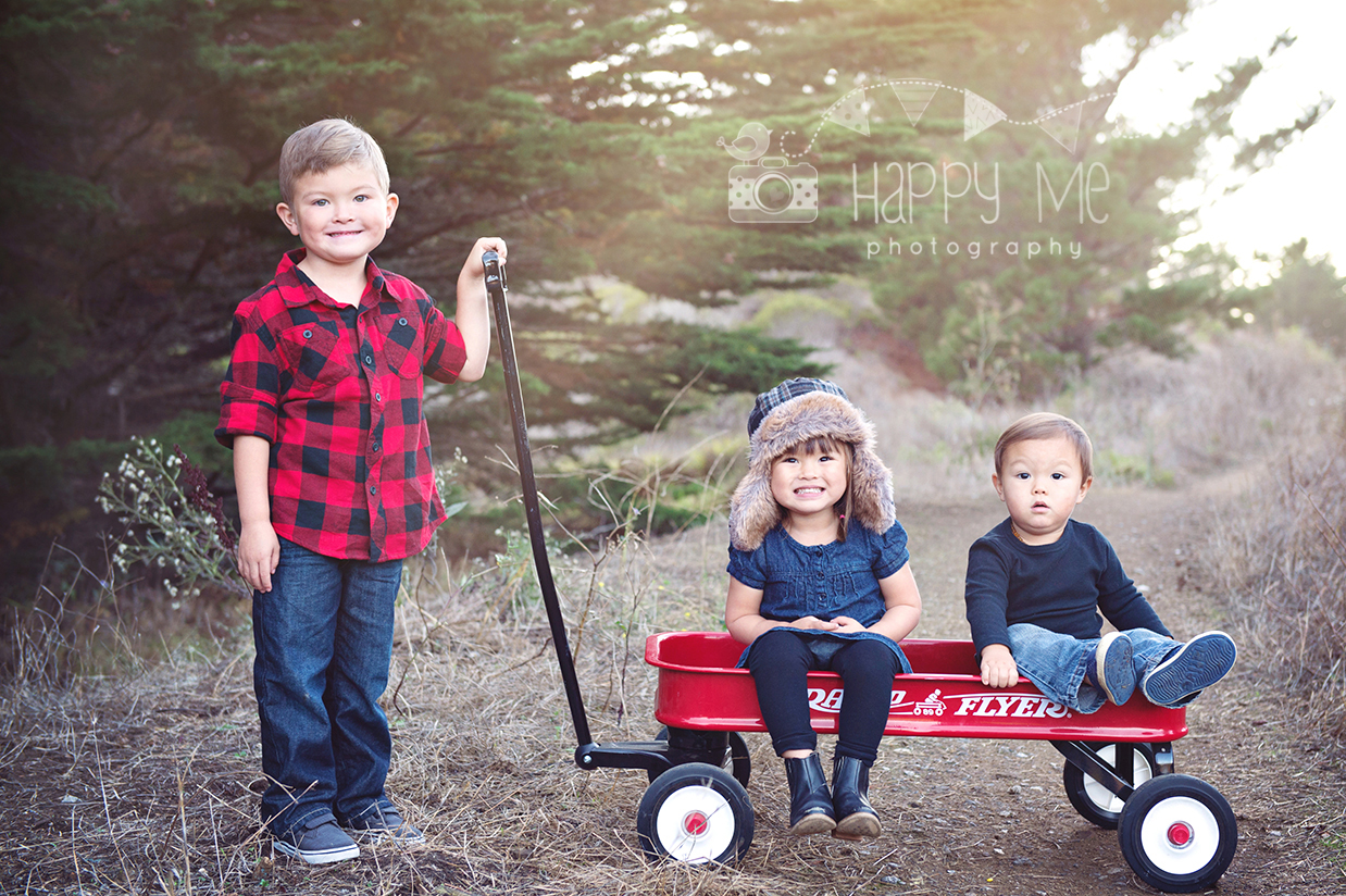 family photographer bay area