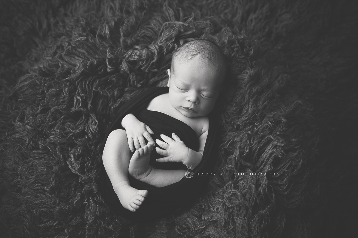 belmont newborn photography