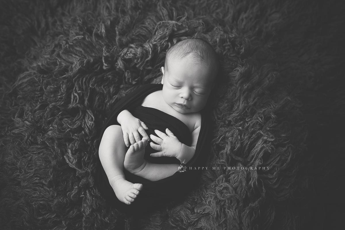 belmont newborn photography